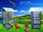 bán lồng chim